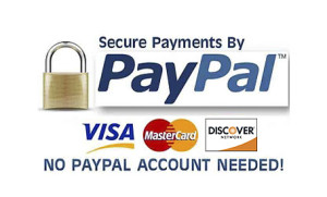 paypal logo otr